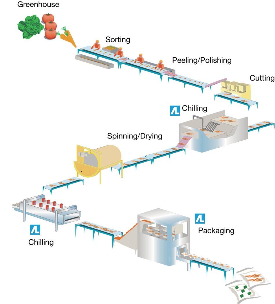 Processing Plant Diagram