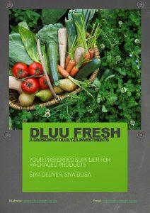 Dluu Company Profile